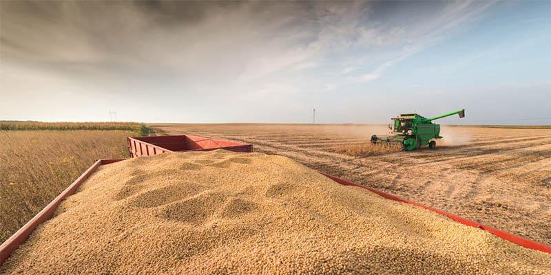 中国买家要求推迟发货,美国大豆积压程度发货时间将延期一个月