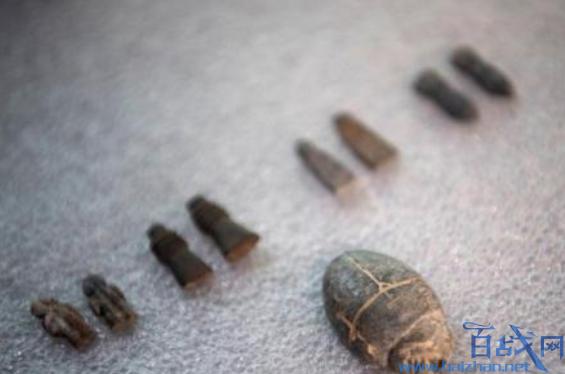 巴西幸存文物首公开