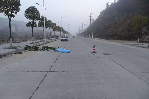 黄冈一卖菜老人清晨被撞,罗田县,肇事司机