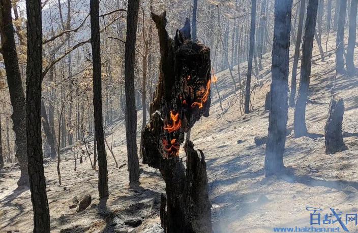 凉山森林火灾原因,凉山火灾原因,凉山森林火灾原因