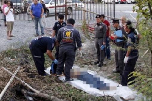 重庆领队救游客,重庆领队被大象踩死,重庆领队救游客被踩死