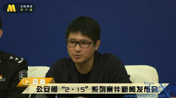 春节档电影盗版案告破,春节档电影遭盗版,2019春节档电影