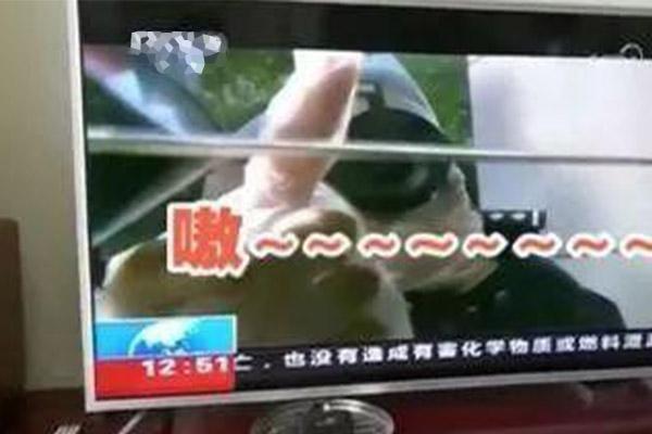 电视机自动开机鬼笑,电视机自动开机,电视机鬼笑