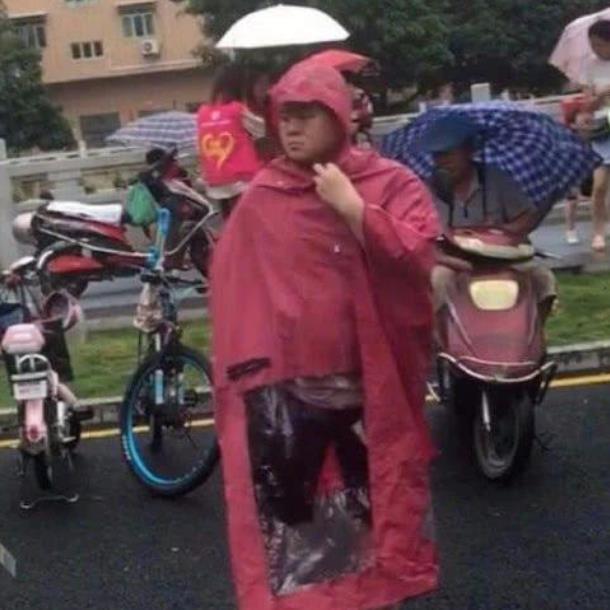 岳云鹏雨中接孩子,岳云鹏老婆辟谣,岳云鹏