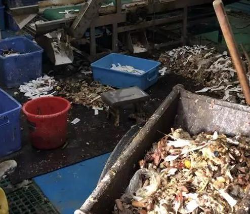 記者臥底消毒餐具廠調查:恐怖如斯,臟不忍賭