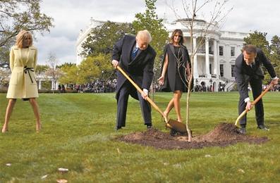 特朗普与马克龙所植友谊之树已死亡,美法两国存在诸多分歧