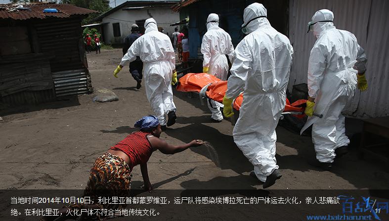 埃博拉病毒,日本将引入埃博拉,日本将引入埃博拉病毒