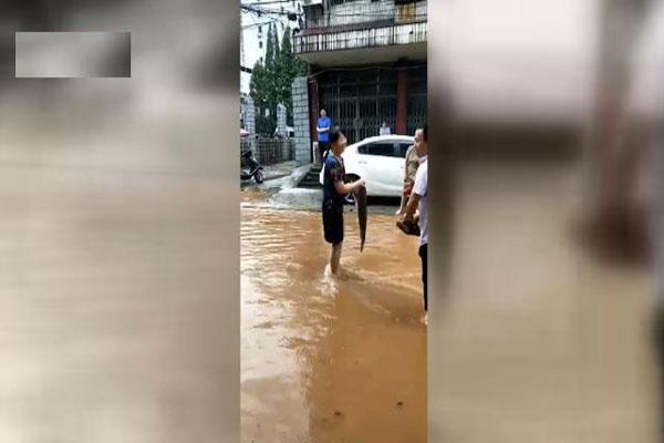 湖南暴雨,南方强降雨,受灾严重
