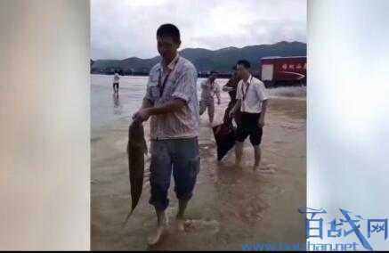 机场被淹成动物园,武夷山景区关闭,武夷山机场被淹,福建武夷山