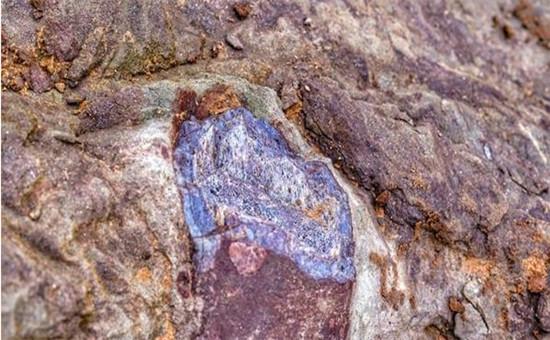 四川广安发现恐龙骨骼化石是怎么回事? 现场已拉起警戒线疑似化石已用防水布盖住