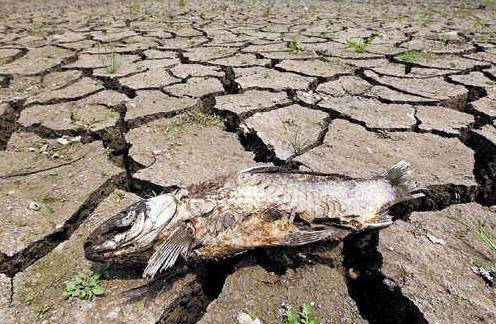 安徽发布干旱预警,淮河干流上游水量大幅减少