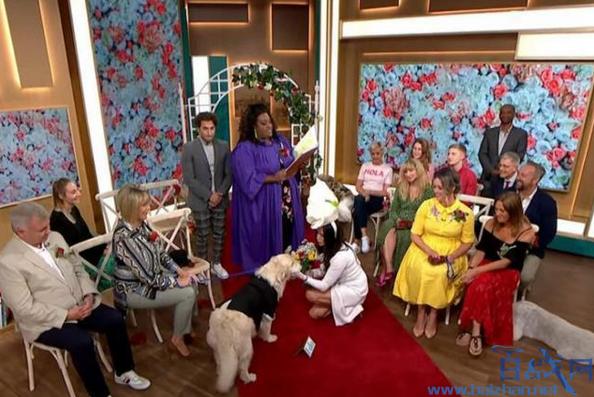 女模嫁6岁爱犬,英国女模特嫁6岁爱犬,女模特嫁给爱犬