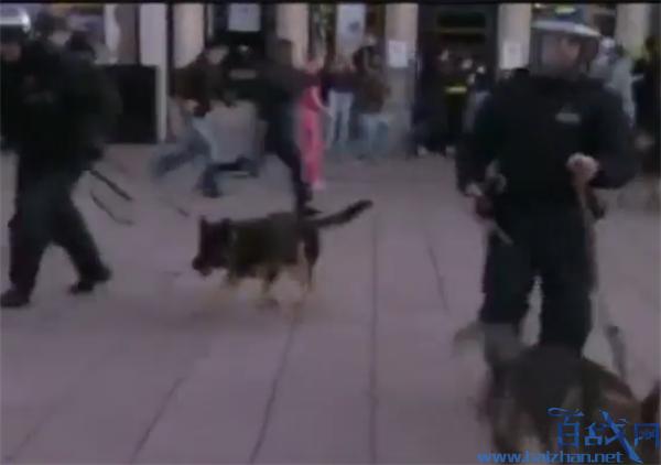 欧美对待暴力示威者,欧美对待暴力示威者