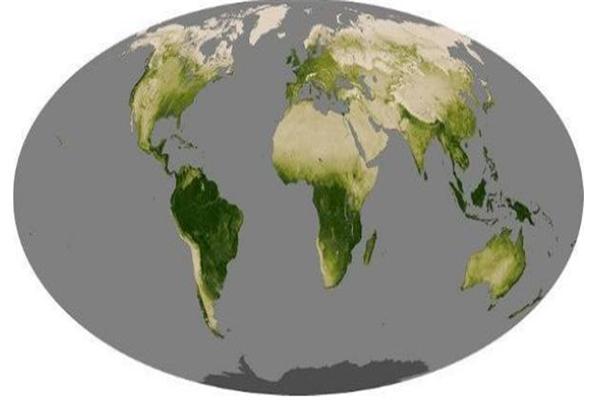 地球,地球停止变绿,气候变化,地球20年前已停止变绿