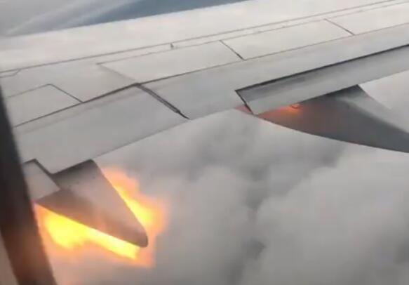 波音737客机引擎冒火,加拿大客机遭鸟击,客机遭鸟击引擎冒火