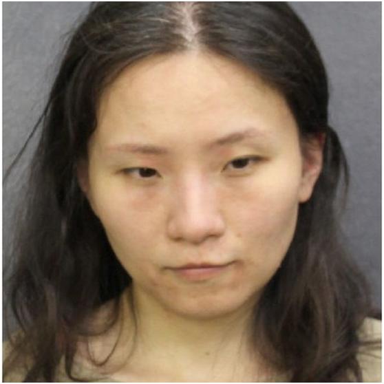 中国女子闯特朗普海湖庄园,闯海湖庄园中国女子被判有罪,闯特朗普庄园女子被判有罪
