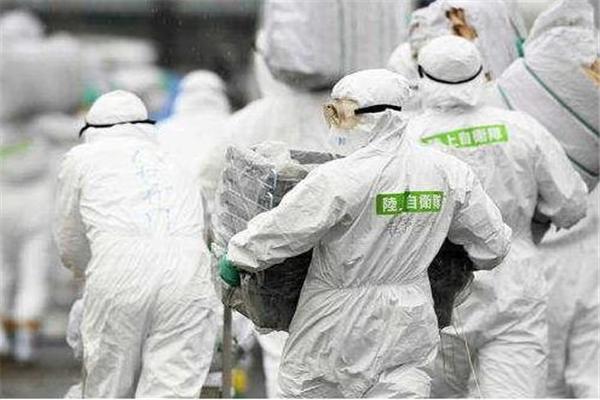 日本猪瘟疫情扩散到8府县 日本关东地区首次出现猪瘟疫情