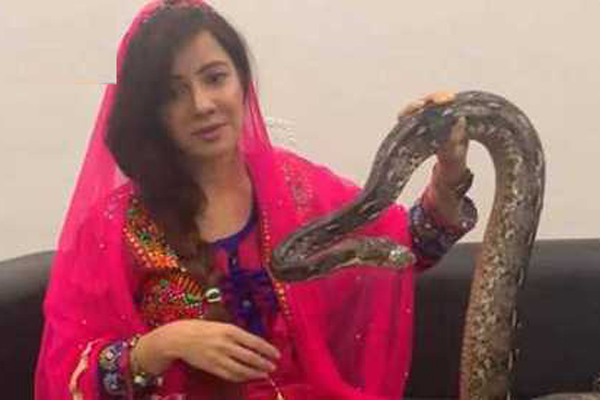印度女歌星拍视频诅咒印度总理 女歌星:我的宠物会在地狱里吃你的肉