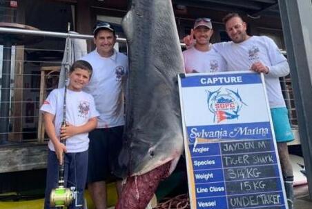 8岁男童捕628斤巨鲨,一举打破世界纪录
