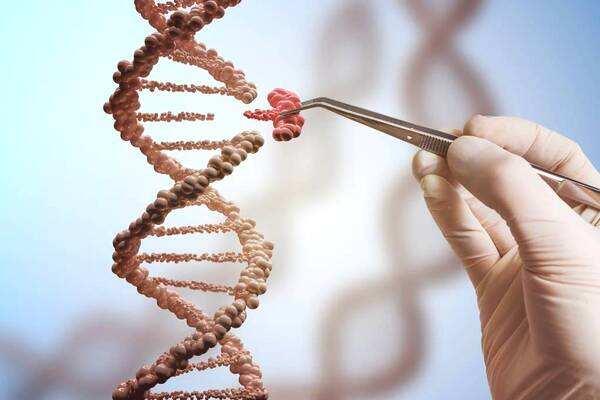 基因编辑应用前景如何?以后可以自行改变DNA吗?