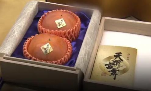 天价柿子2个5万元,日本天价柿子2个5万元,天价柿子