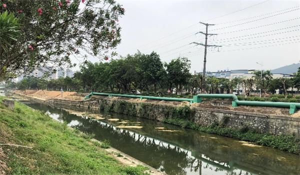旺旺涉嫌偷排廢水,大量魚類因河流嚴重污染而死亡