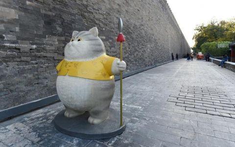 北京故宫神武门现巨型御猫 肥嘟嘟锦衣卫御猫让人忍不住想撸