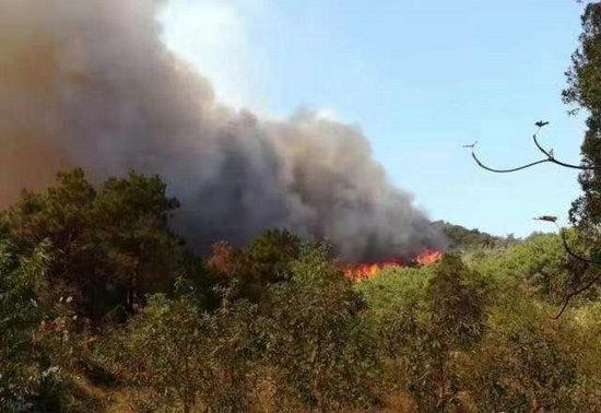 佛山山火得到控制 1000多名救援人员持续奋战近30小时