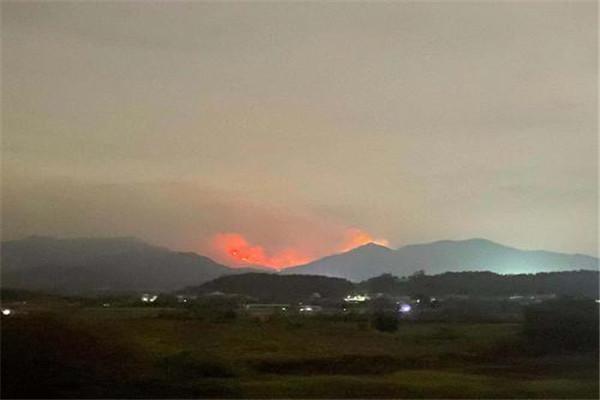 广东佛山发生山火,广东佛山山火,佛山发生山火,佛山山火,广东山火
