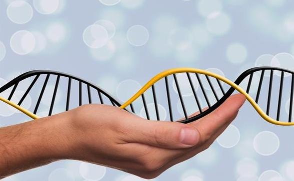 人类自然寿命仅38岁,生活方式与医学技术是长寿的根本