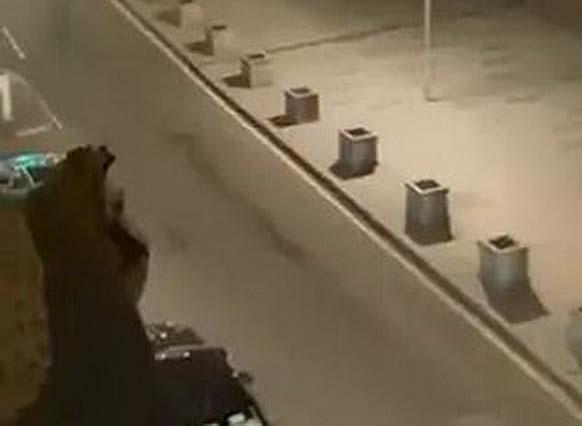 莫斯科突发枪击案致1死5伤 抢手被当场击毙