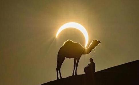 骆驼背上的太阳红爆网络,日偏食奇景