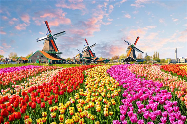 荷兰改名尼德兰是真的吗 荷兰改名尼德兰是怎么回事