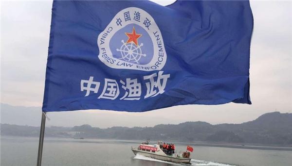 长江正式实施十年禁渔令,将给优质鱼提供繁衍的空间