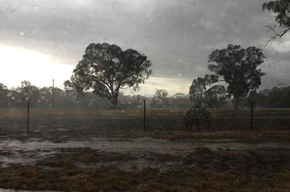 澳大利亚终于下雨了,山火的火势有望得到控制