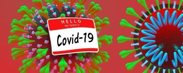 世卫命名新冠病毒,COVID-19,SARS-CoV-2