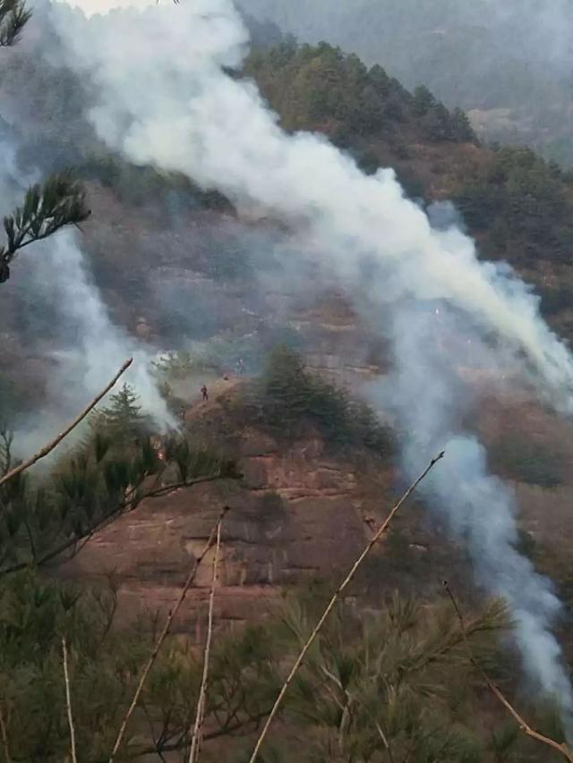 甘肃突发森林火灾,甘肃森林火灾,甘肃森林火灾起火原因