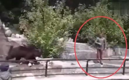 波兰男子解封后去动物园和母熊打架,新冠疫情又逼疯了一个