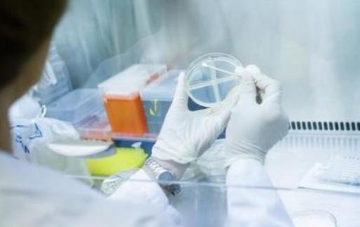 新冠康复者抗体或消失,群体免疫将走进死胡同