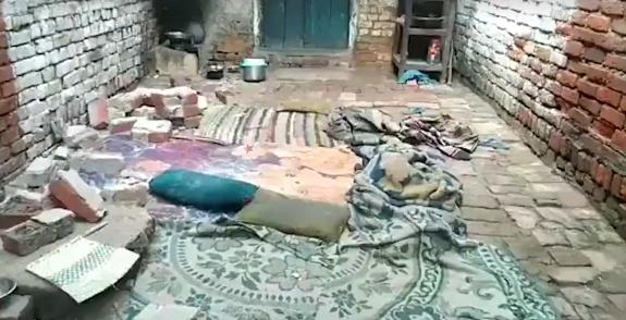 群猴推墙砸死一家异能五口人,印度再度上演猴�子杀人事件