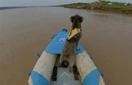一人一狗黄河漂流