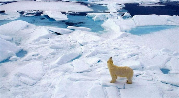 北极正在生成新的气候系统,各项数值已远超往常观测范围