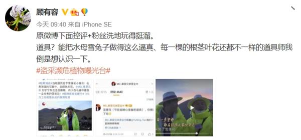 极限挑战国家二级保护植物,刘宇宁摘国家二级保护植物,刘宇宁