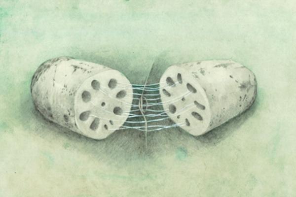 中国科学家制出新型仿生手术缝线,藕断丝连,俞书宏院士团队,新型仿生手术缝线