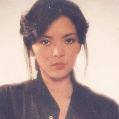 陈玉莲,1960年3月25日出生于香港,中国香港女演员。1977年,加盟TVB艺训班第六期。1982年,主演金庸武侠剧《天龙八部》,饰演神仙姐姐王语嫣。1983年,再度主演金庸剧《神雕侠侣》,饰演女一号小龙女。