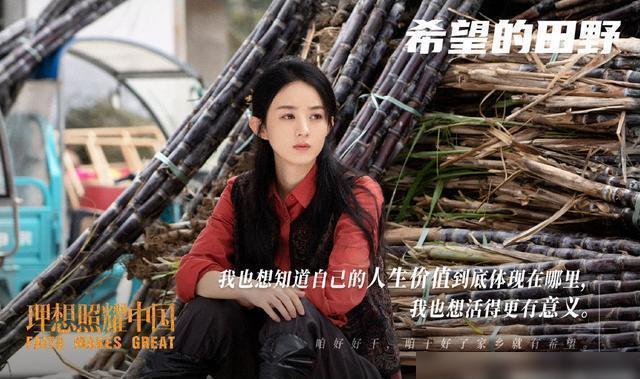 赵丽颖在《希望的田野》中表现如何?赵丽颖饰演的是一个扶贫女干部
