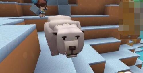 迷你世界雪熊怎么繁殖?迷你世界雪熊繁殖攻略
