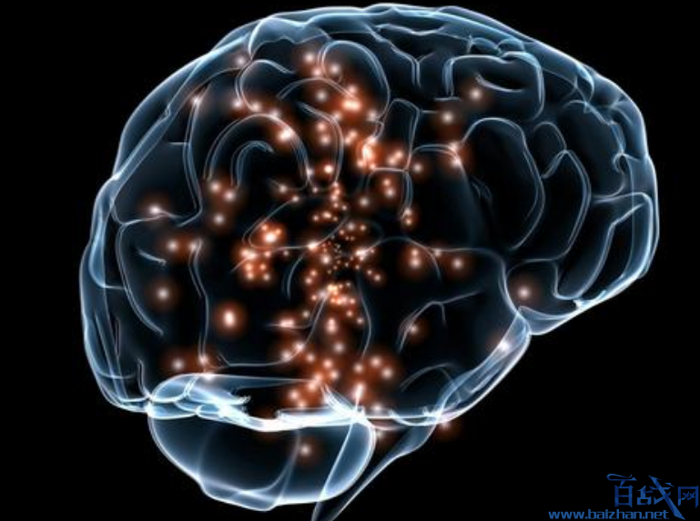 人脑连接互联网,大脑连接互联网