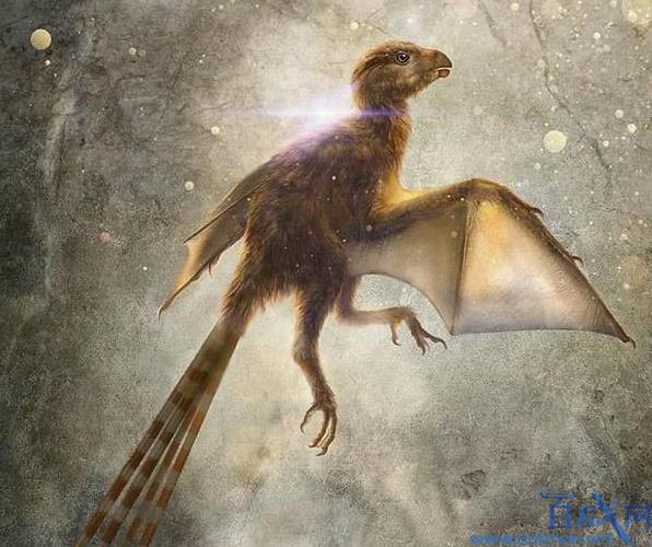 恐龙新物种!科学家发现1.63亿年前的新型恐龙!