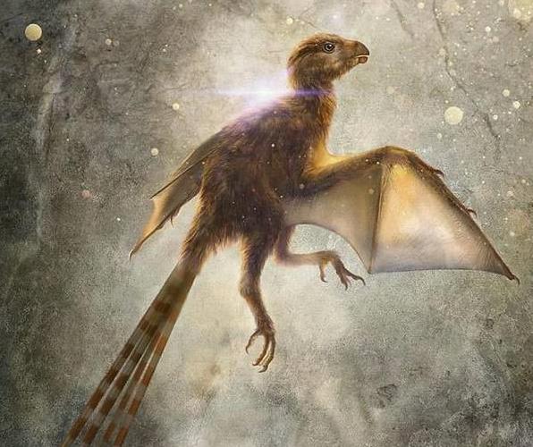 恐龙新物种!科学家发现1.63亿年前的新型恐龙